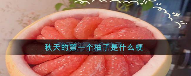 秋天的第一个柚子是什么梗