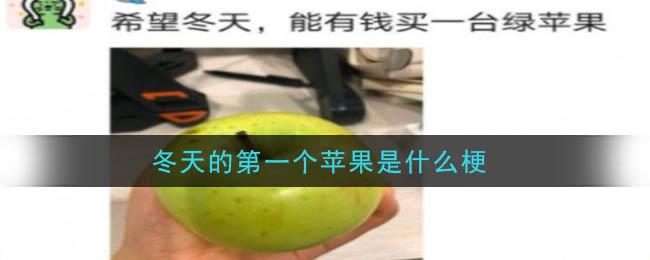 冬天的第一个苹果是什么梗